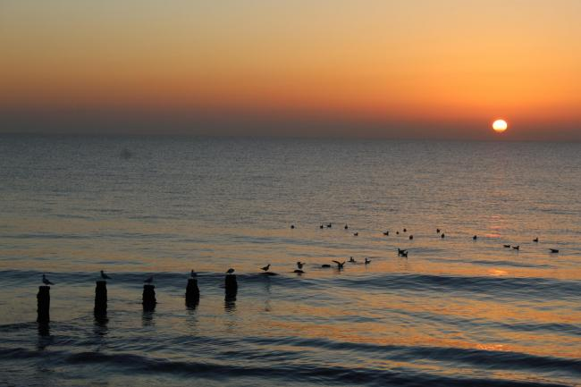 READER PICTURE: Sunrise over Frinton