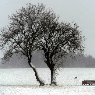 Snow leaves thousands without power