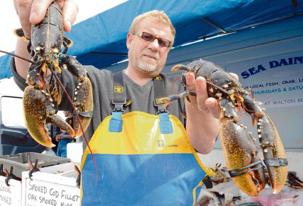 Lobsters worth £400 pinched from marina tank