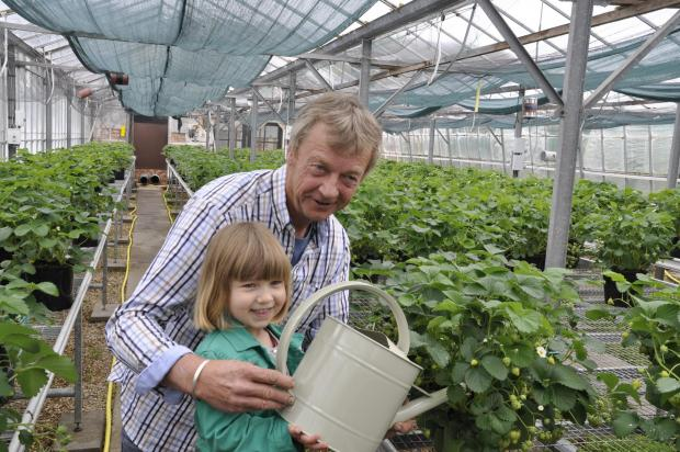 Fruit farmer hopes for sweet taste of success at Chelsea