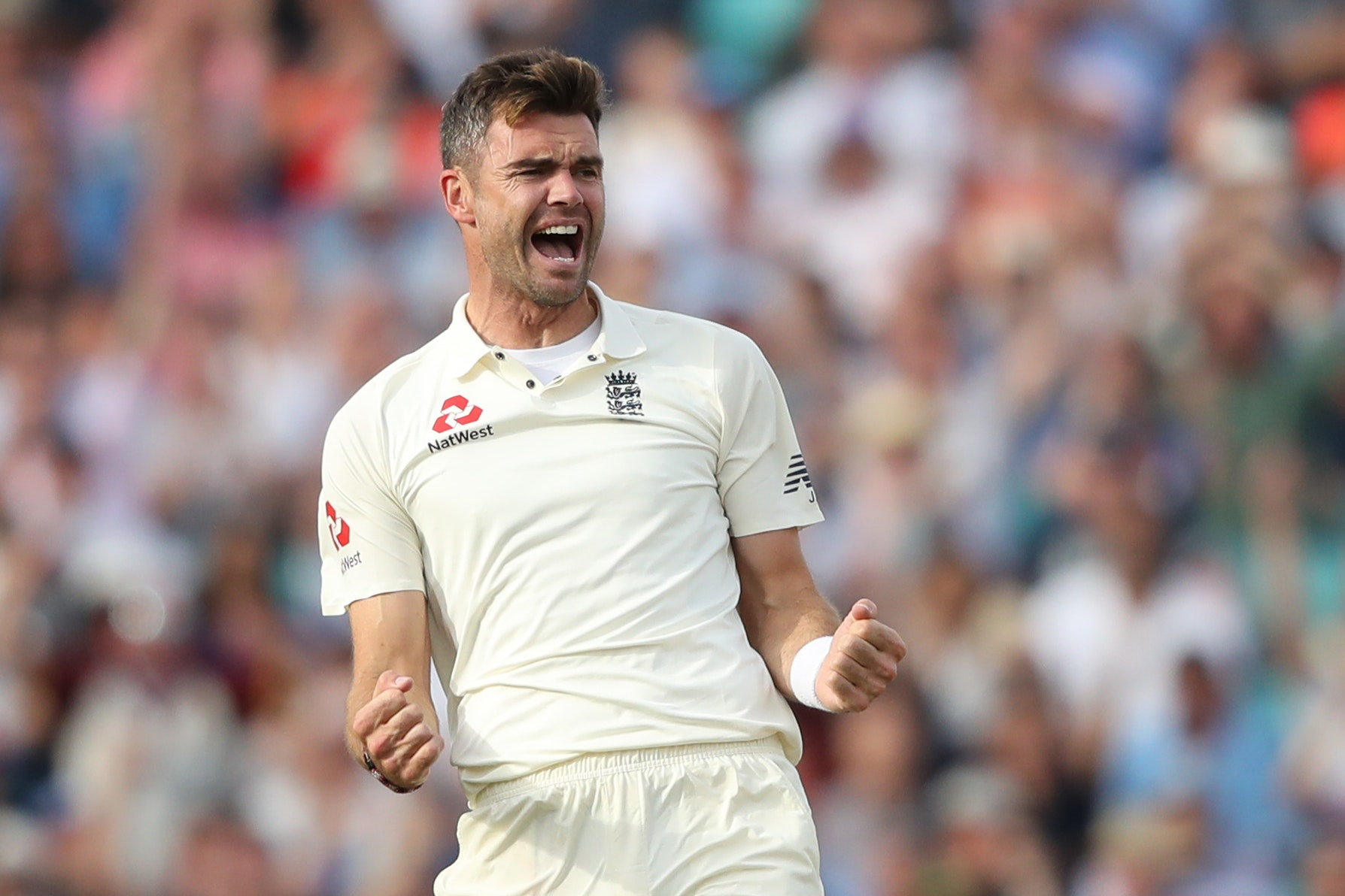 A four-wicket burst from James Anderson lifted England (Adam Davy/PA)